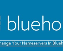 Change Your Nameservers In Bluehost