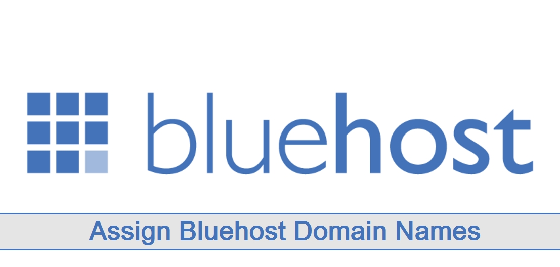 Assign Bluehost Domain Names